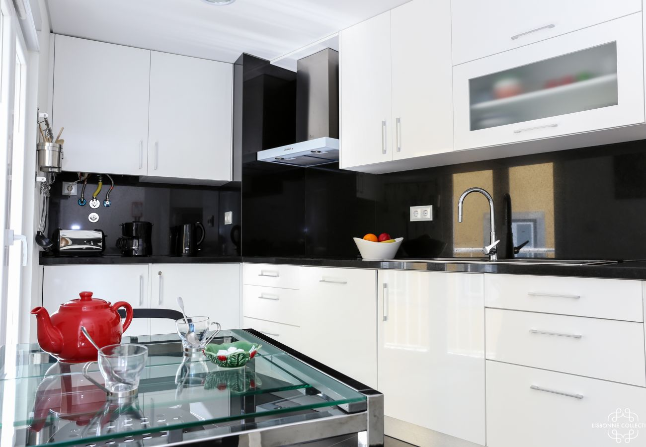 Bright black and white marble upscale kitchen with cooking plates