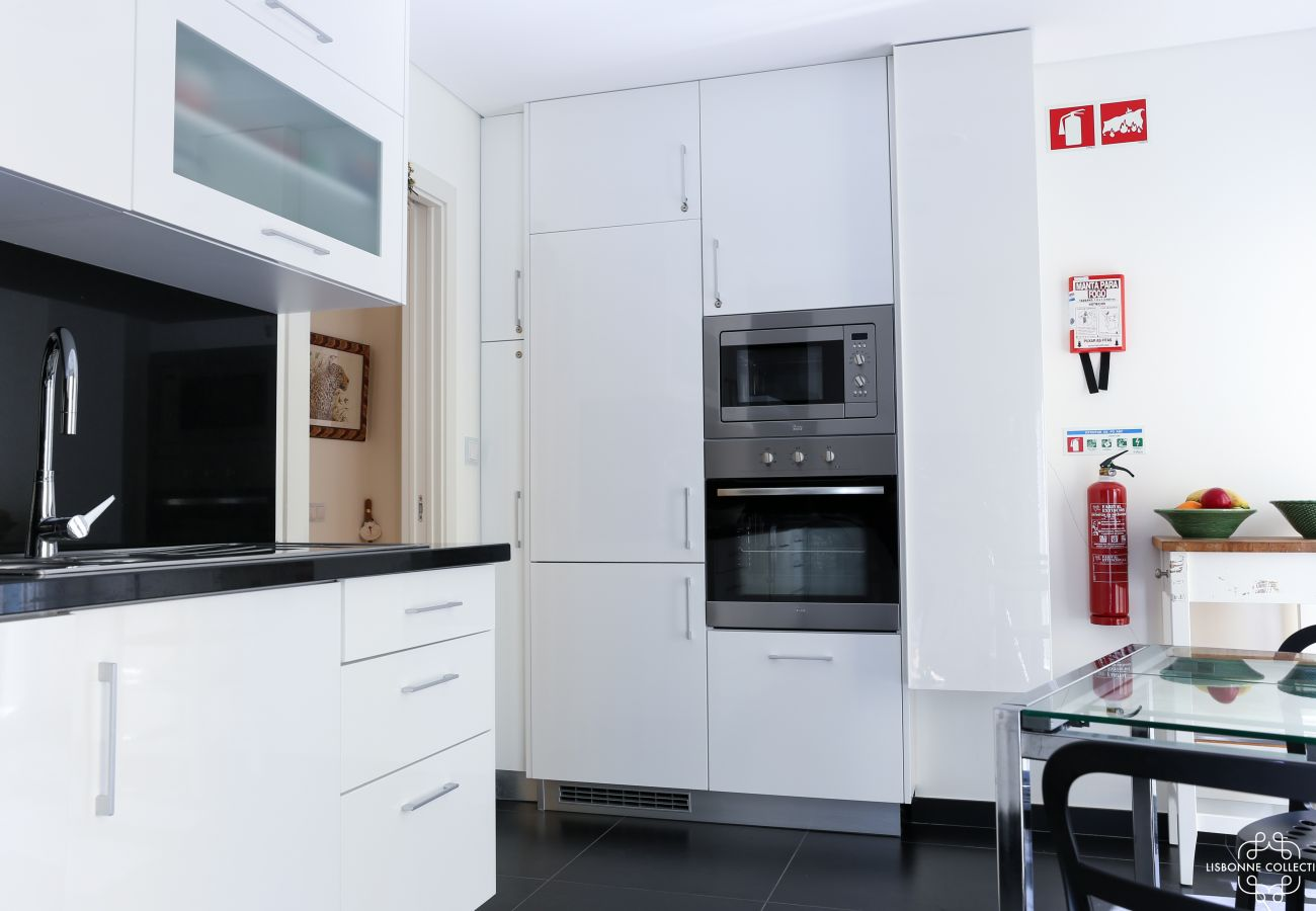 Contemporary kitchen fully equipped with oven and microwave