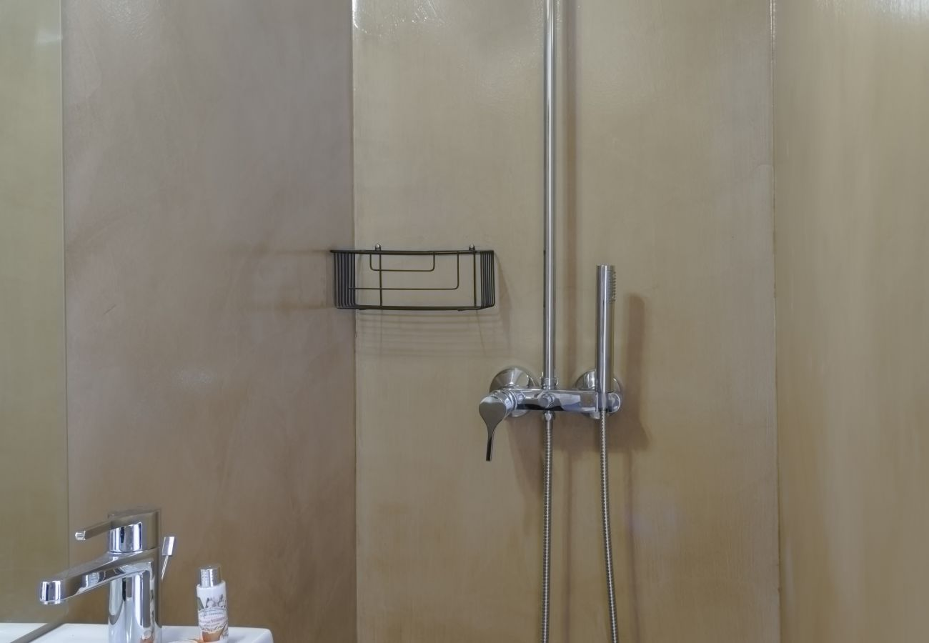 Shower room with modern and sober shower