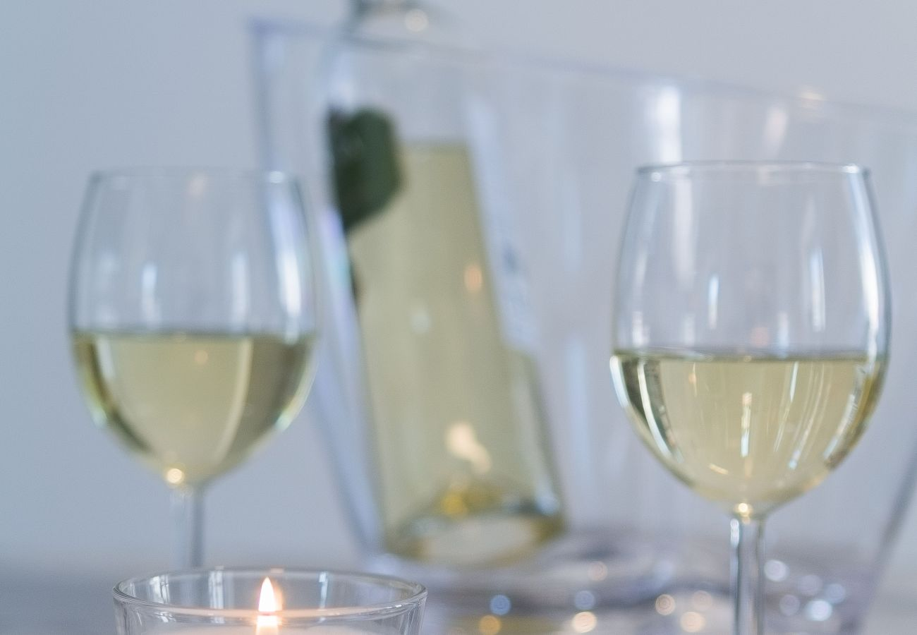 Glass of white wine to drink in an apartment for rent