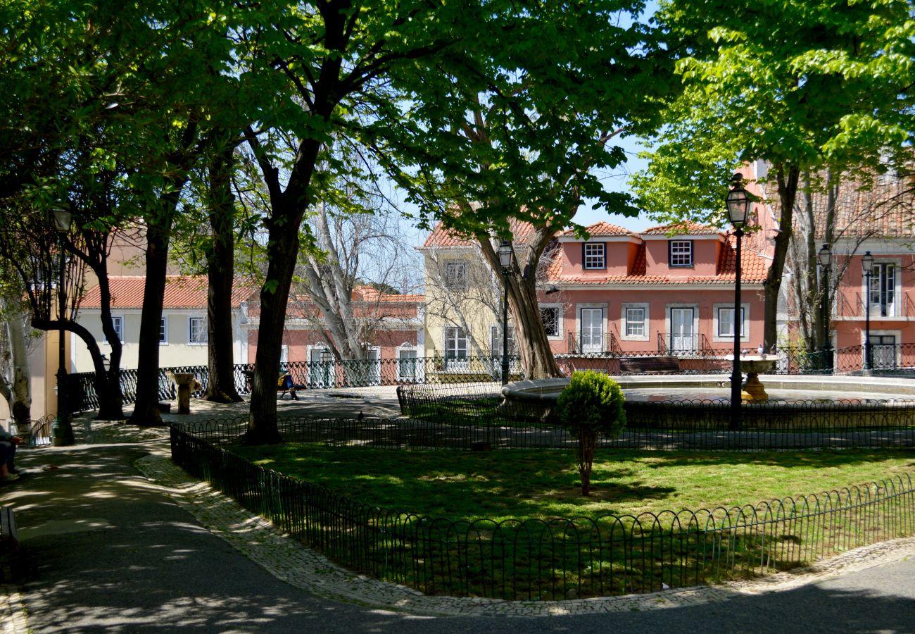Green park in the historic and prestigious district of Graça