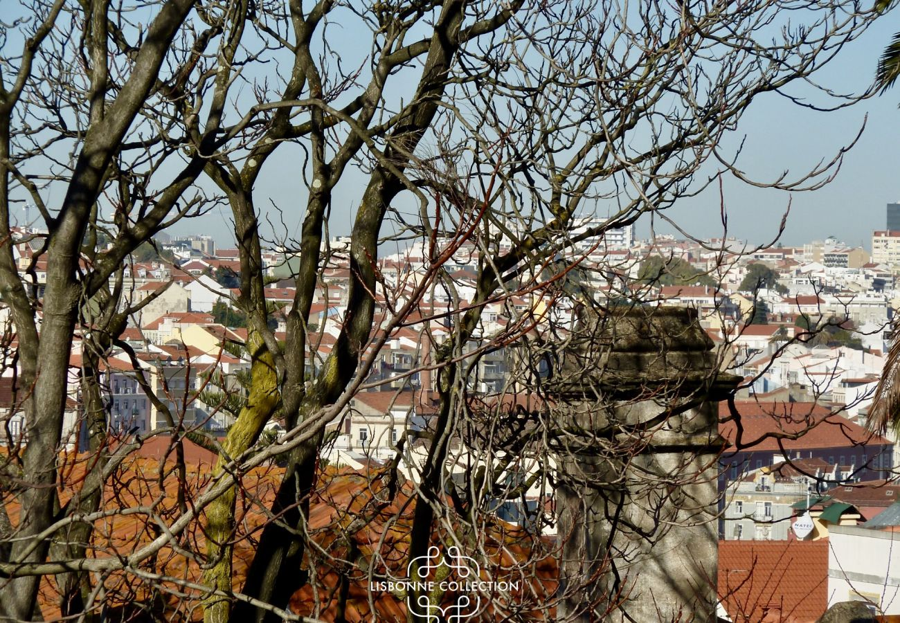 View of the rooftops of the city of Lisbon